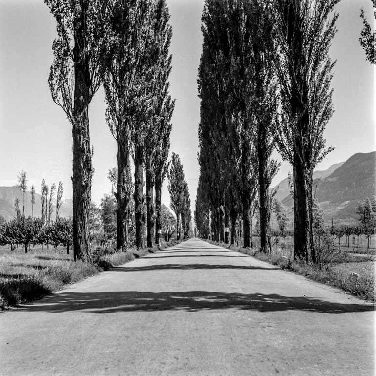 Route de Martigny à Sion